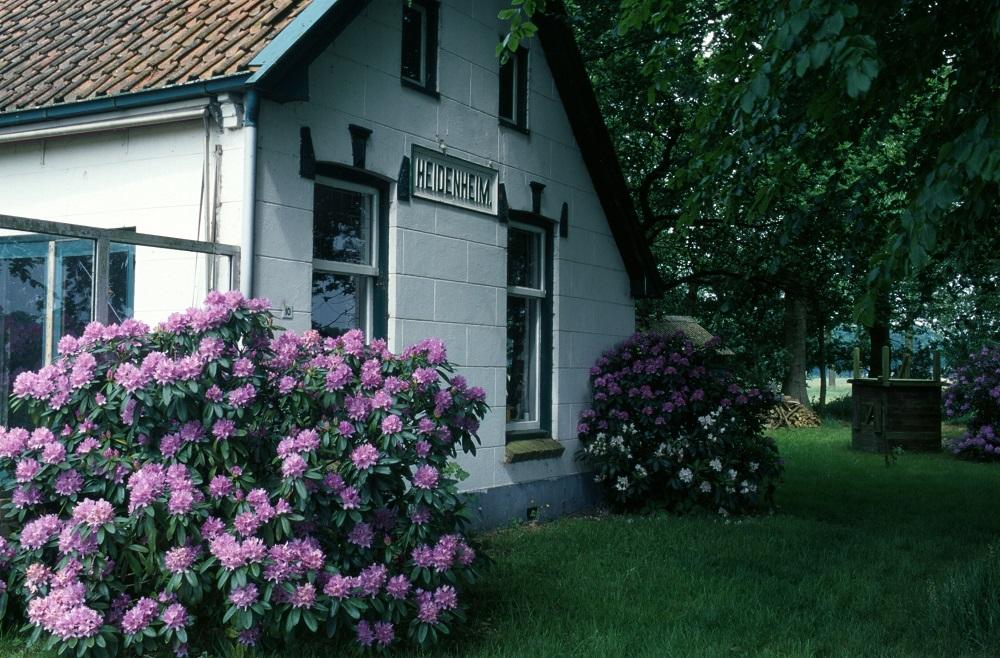 Heidenheim - Jaap de Vries