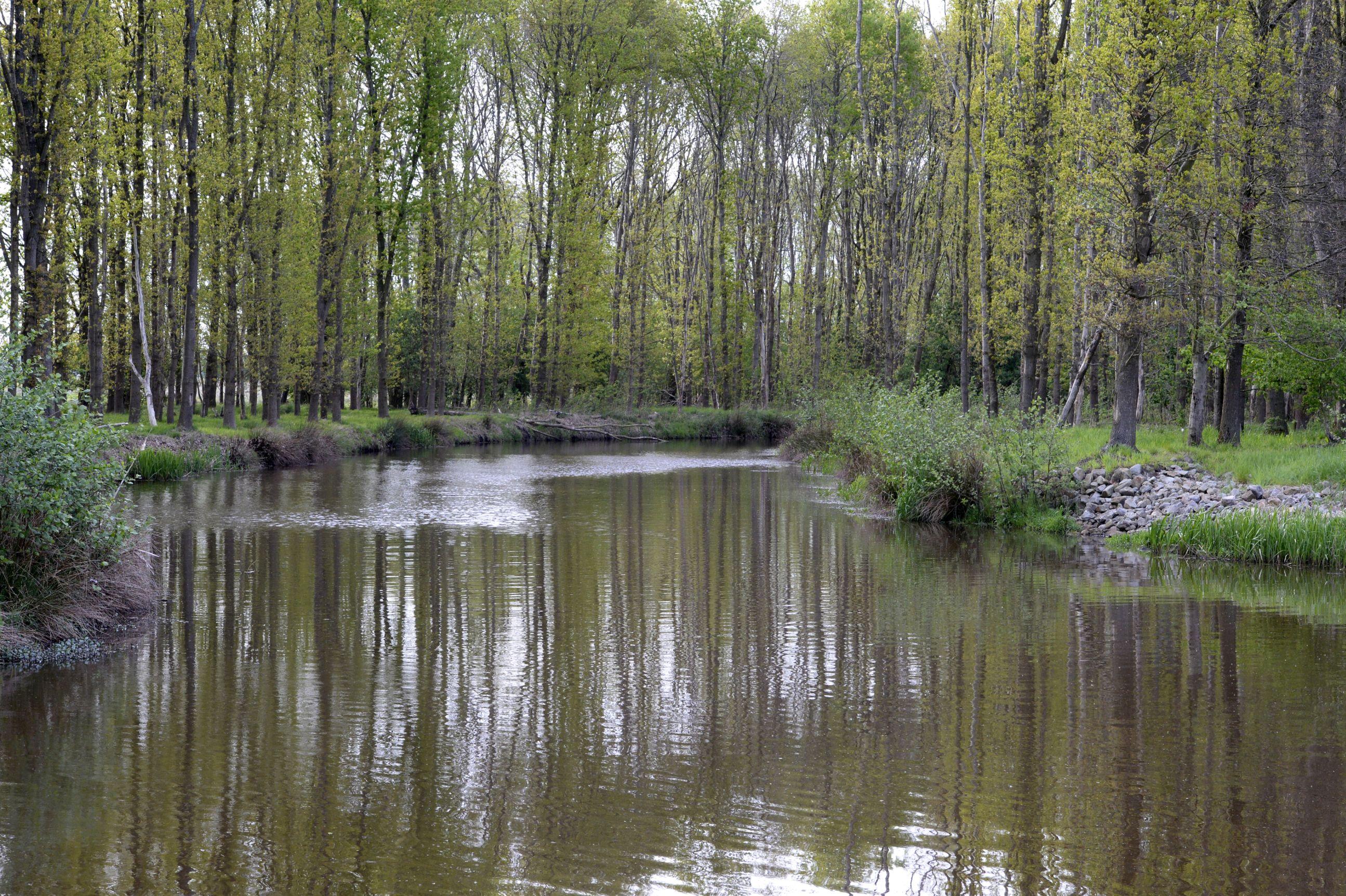 Torenveen-Bonnerklap - Jaap de Vries