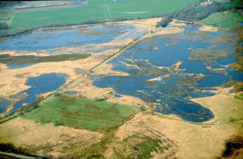 Boerenveensche plassen - Geert de Vries