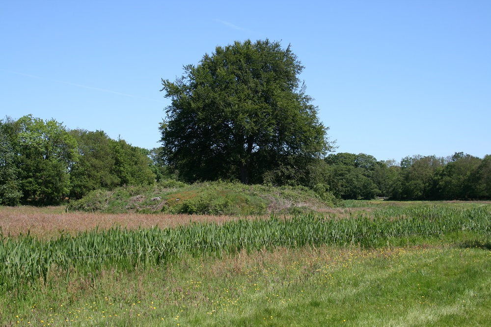 Landgoed Rheebruggen, Borgbarchien - Bertil Zoer