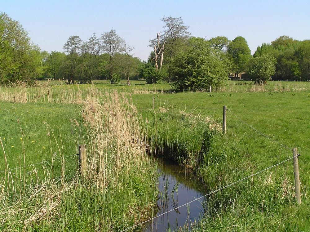 Landgoed Rheebruggen - Han van Hagen