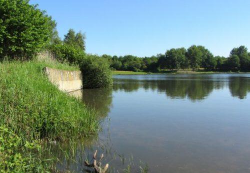 Natuurbescherming Het Hollandsche Veld overgedragen