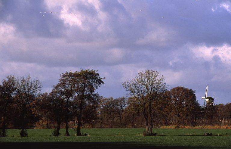kleibosch-met-molen-foto-jaap-de-vries