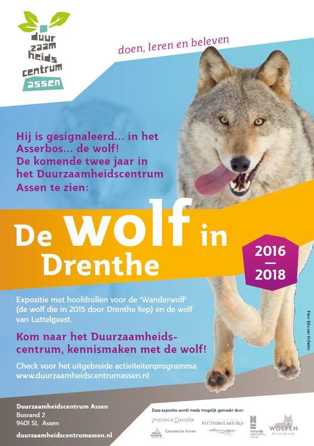 affiche-wolf-in-drenthe