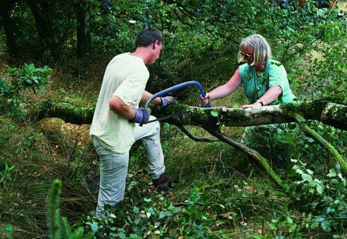 Belang groene vrijwilligers benadrukt