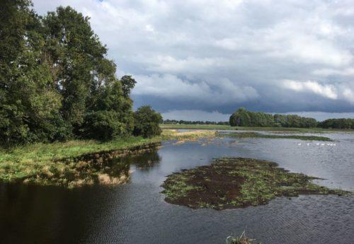 Raad van Toezicht Het Drentse Landschap zoekt twee nieuwe leden