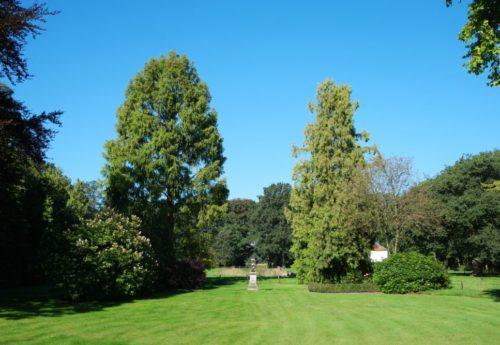 Nieuwe blog Over tuinen en koken