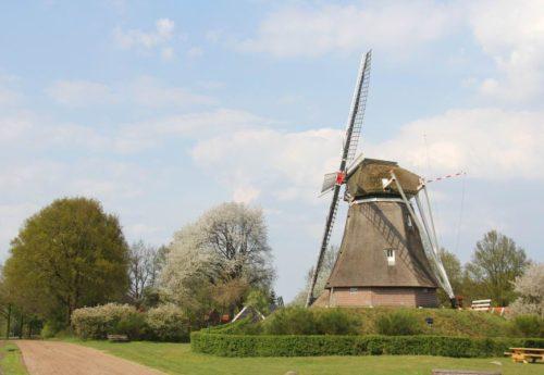 Gemeente Coevorden draagt zeven molens over aan Het Drentse Landschap