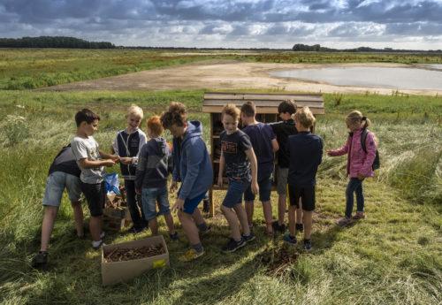 Kinderen bouwen een droomhotel voor insecten Tusschenwater