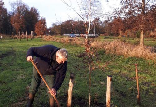Tientallen bomen geplant